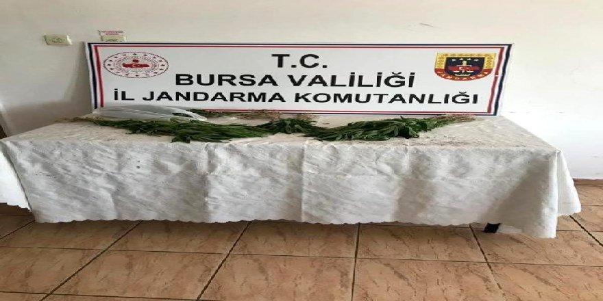 Yenişehir'deDüzenlenen Uyuşturucu Operasyonunda 2 Kişi Gözaltına Alındı!