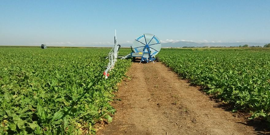 Tarımda Su Tasarrufu Amacıyla Bursa'da DSİ'den Önemli Yatırımlar