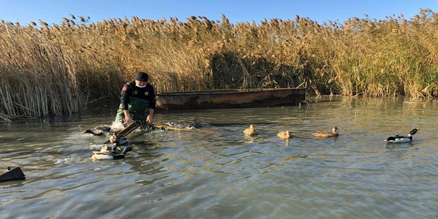 Bursa Uluabat Gölü'nde Kaçak Avcılık Yapan Kişiye Para Cezası
