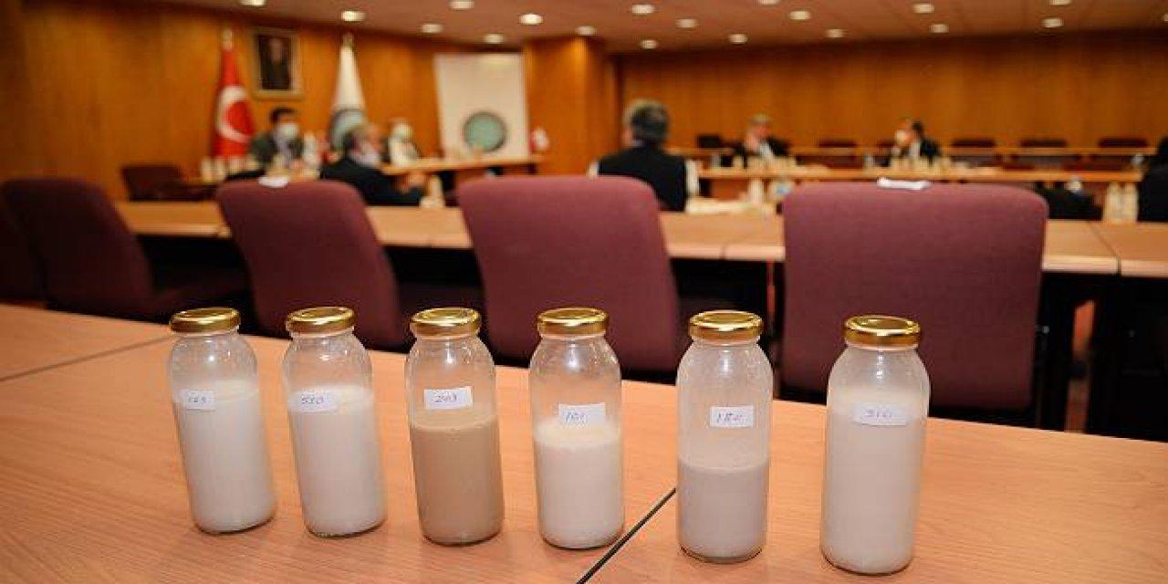 Bursa Uludağ Üniversitesinde Ceviz Suyundan Süt Ve Yoğurt Yapıldı