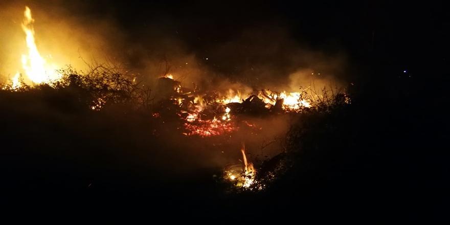 Bursa'daki İznik Gölü Kıyısında Sazlık Alanda Yangın!