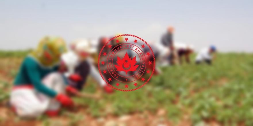 Bursa Valiliği Mevsimlik Tarım İşçilerine İlişkin Genelgeyi Duyurdu