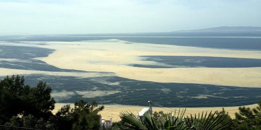 Mudanya Sahilini Deniz Salyası Kapladı