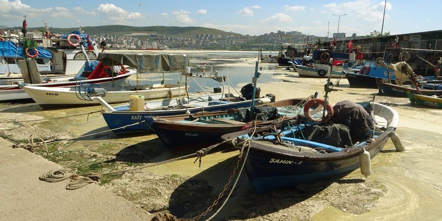 Mudanya'dan Sonra Gemlik Körfezi de Deniz Salyası İle Kaplandı