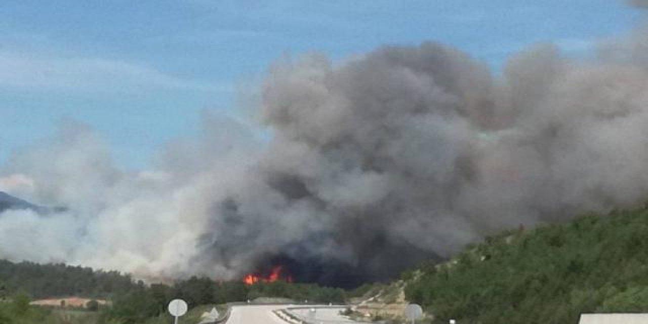 Kastamonu'da Ormanda Yangın Çıktı!