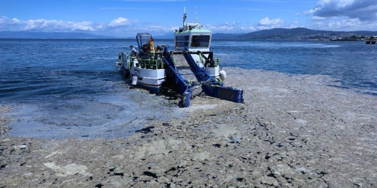 Bursa Büyükşehir Belediyesi Sahillerdeki Salya Temizliğine Başlandı