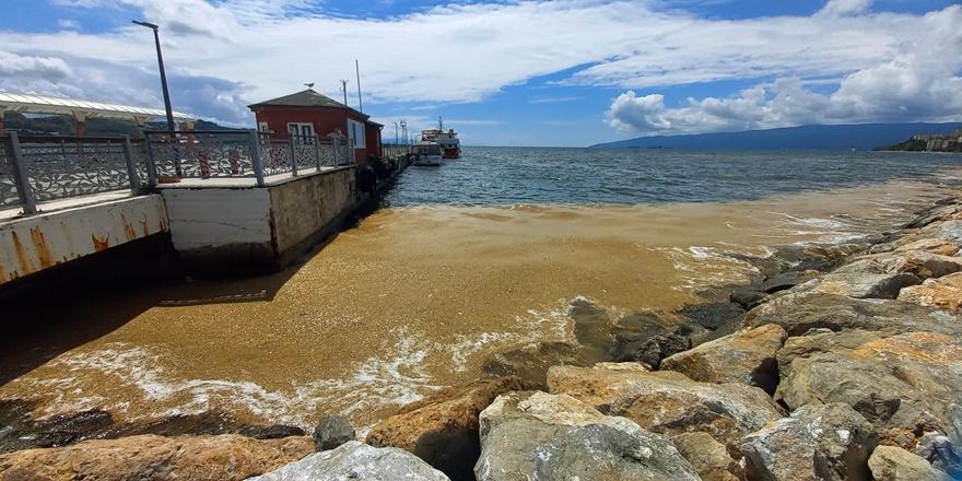 Deniz Salyası Gemlik Kıyılarında Yoğunlaştı