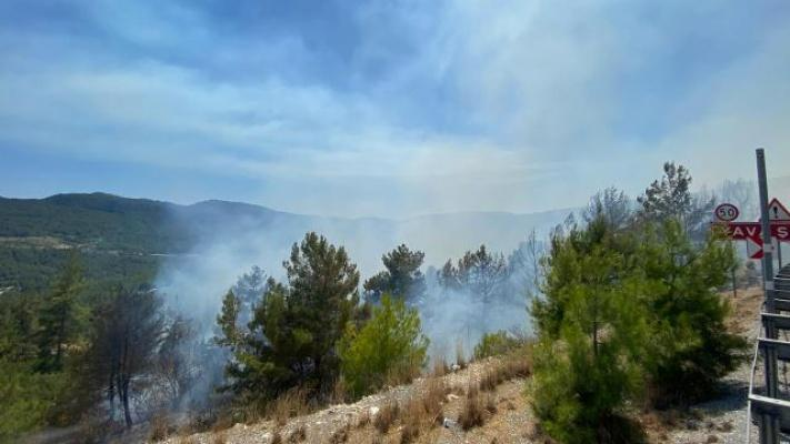 Antalya Akseki'de Ormanda Yangın Çıktı