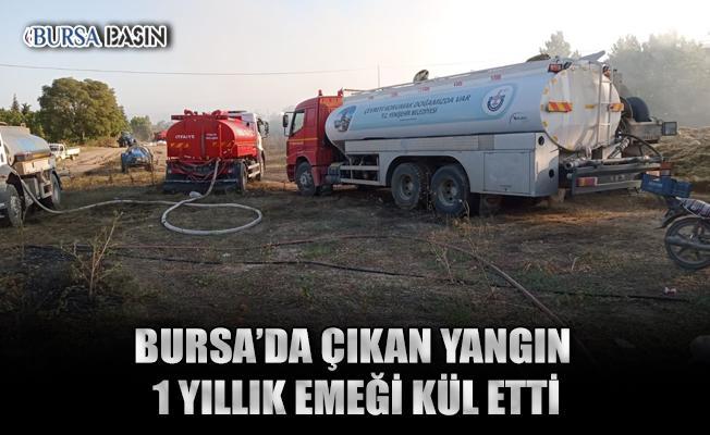 Bursa'da Bir Köyde Çıkan Yangın 6 Bin Saman Balyasını Küle Çevirdi