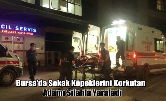 Bursa'da Köpeklerini Korkutan Adamı Silahla Yaraladı