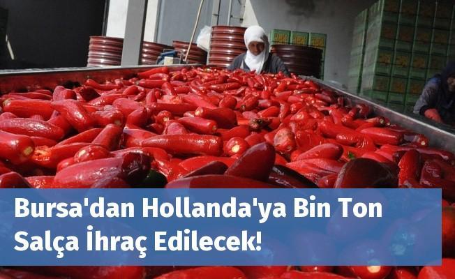 Bursa'dan Hollanda'ya Bin Ton Salça İhraç Edilecek!