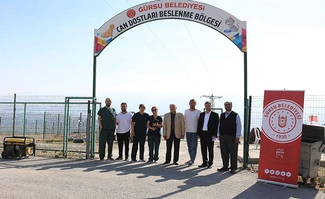 Hayvan Dostu Gürsu Belediyesi