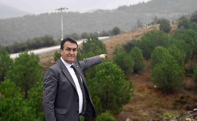 Osmangazi Belediyesinden 1 Milyon Fidan Kampanyası