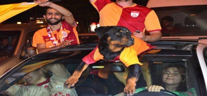 Galatasaray'ın Şampiyonluğu Bursa'da Coşkuyla Kutlandı
