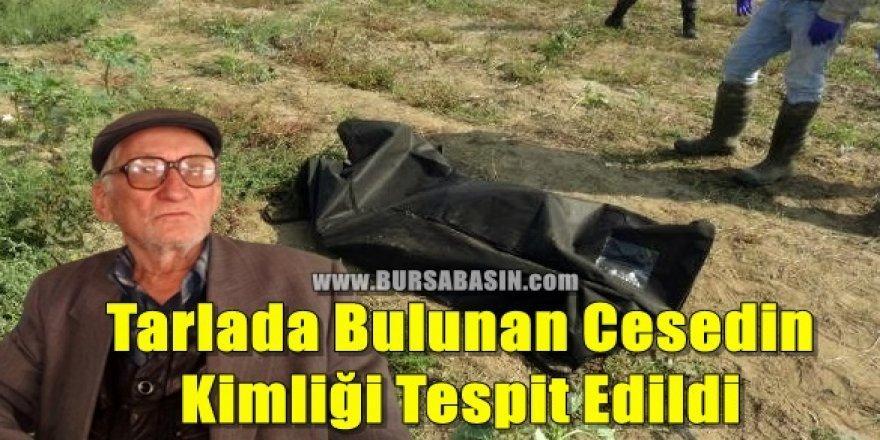 Bursa'da Tarlada Bulunan Cesedin Kimliği Tespit Edildi
