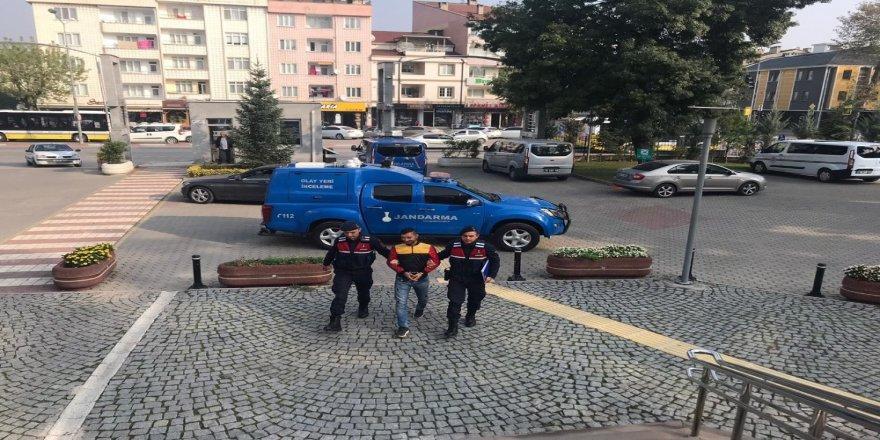 Jandarma Hırsızı Gizlendiği Ağaç Kovuğunda Yakaladı