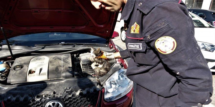Bursa'da Yardım Etmek İçin Durduğu Yaralı Kedi Aracın İçine Kaçtı