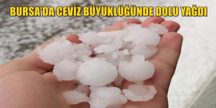 Bursa'da yağan ceviz büyüklüğündeki doludan kiraz ve çileğe büyük zarar